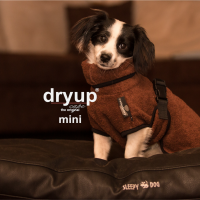 mini_dryup-cape-MIni-in-ed_1280x1280@2x