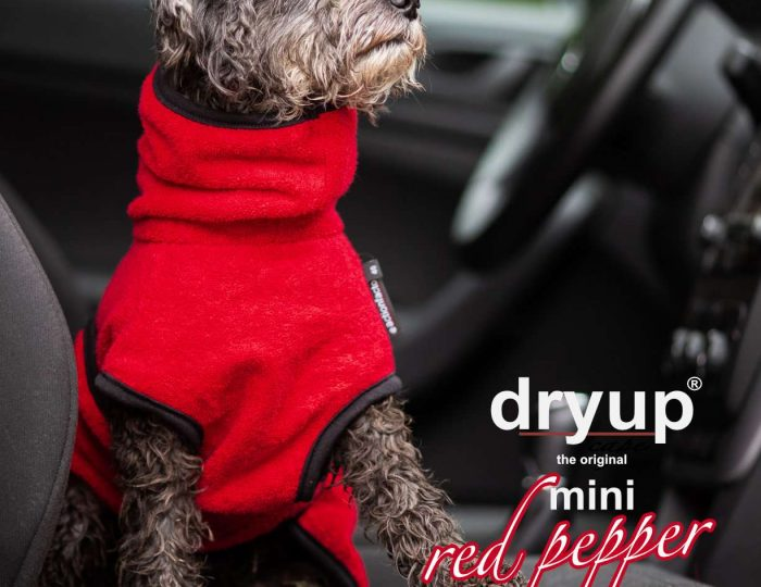 mini_dryup-cape-redpepper-Mini-head_1280x1280@2x