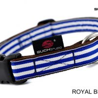 suchtrupp_hundehalsband_royal-beach