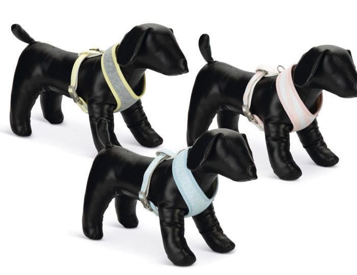 puppy_harness1